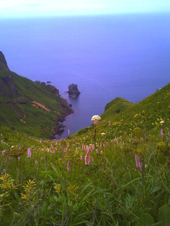 桃岩コースから猫岩を見る