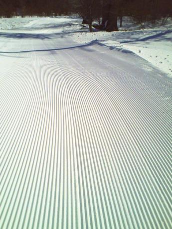 スキー場・圧雪車のあと