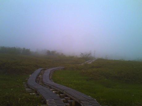 霧の弥陀ヶ原