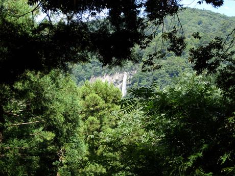 熊野古道から見る那智の滝