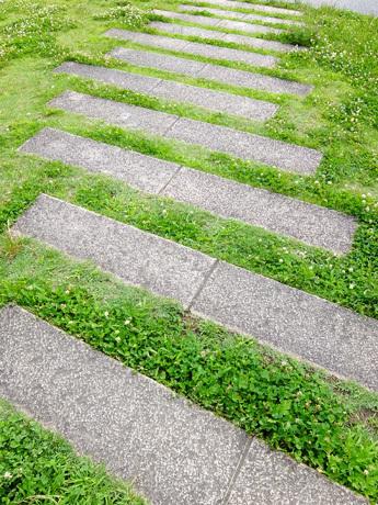 鴨川河川敷の階段