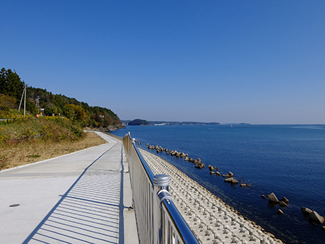 南三陸の海と遊歩道