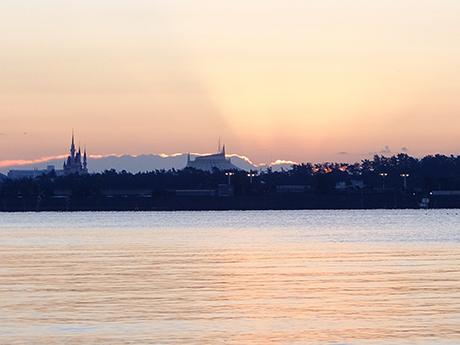 葛西臨海公園の日の出前の光