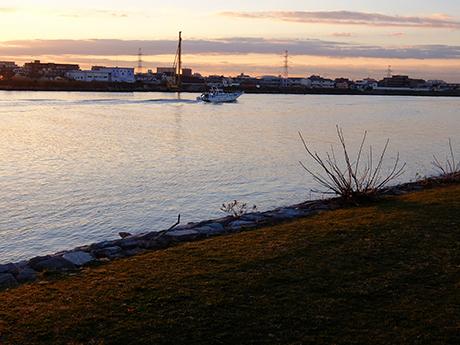 旧江戸川の朝
