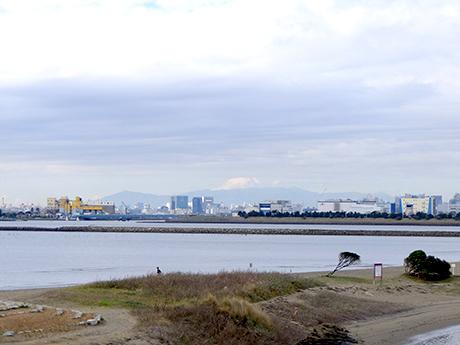 葛西海浜公園からのぞむ富士山