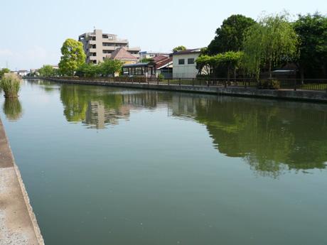 初夏の新川
