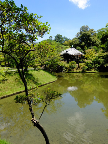 桂離宮・池と園林堂