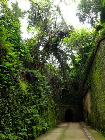 猿島のトンネルと石垣