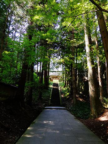塩田平・安楽寺