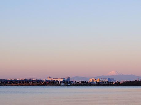 葛西臨海公園から見た早朝の富士山