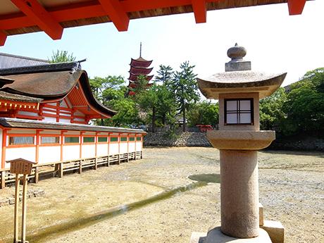厳島神社の鏡の池と五重塔